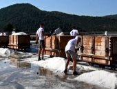"""فيديو يوضح طريقة حصاد """"الملح"""" فى كرواتيا"""