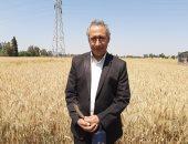 ورشة عمل حول أثر إستخدام التقاوى المحسنة على إنتاجية المحاصيل الحقلية بالشرقية