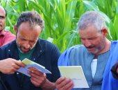 مدارس حقلية لتوعية المزارعين بمواعيد وطرق الزراعة ومقاومة الحشائش