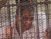 محاكمة جمال اللبان مدير التوريدات السابق بمجلس الدولة اليوم