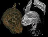 كيف حنط المصريون القدماء الحيوانات؟ باحثون يحاولون فك اللغز بتقنية 3D