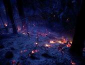 حرائق الغابات الأمازون المطيرة فى البرازيل زادت فى أكتوبر
