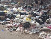 شكوى من انتشار القمامة والأوبئة بشارع الجوازت بمركز فاقوس شرقية