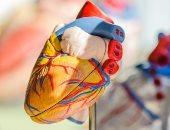 4 عوامل للوقاية من أمراض القلب منها اتباع النظام الغذائي لدول شرق المتوسط