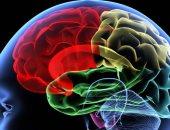 جين المعمرين يحميك من مخاطر التوتر ويقاوم أمراض الشيخوخة