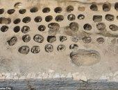 جاتلهم شوطة.. اكتشاف مقبرة جماعية لـ350 شخصا عمرها 150 عاما باليابان