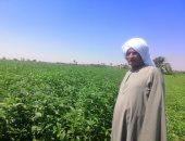 موجز الاقتصاد.. 45.6% زيادة فى القروض الاستثمارية متوسطة الأجل الممنوحة للمزارعين