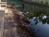 """شكوى من انتشار مياه الصرف الصحى بقرية الزهايره في الدقهلية.. """"سيبها علينا"""""""
