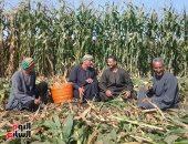 وزير الزراعة يثمن دور الفلاح فى تحقيق الأمن الغذائى ويهنئه بمناسبة عيده 68