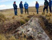 شجرة تكشف كيف تغيرت البيئة بجبال الأنديز خلال 10 ملايين سنة.. اعرف التفاصيل