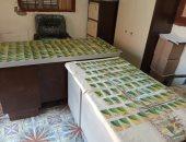 وكيل تموين الأقصر : ضبط 322 بطاقة تموينية بحوزة صاحب مخبز بمدينة إسنا