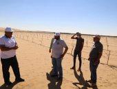 محافظ الوادى الجديد يتابع مشروع زراعة وإنتاج الزيتون فى منطقة أبو منقار .. صور