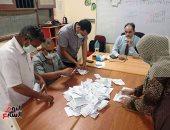 انتهاء التصويت بجولة الإعادة بانتخابات مجلس الشيوخ وبدء الفرز فى 14 محافظة