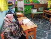 بعثة الجامعة العربية: جولة الإعادة لانتخابات مجلس الشيوخ جرت فى نطاق احترام الدستور