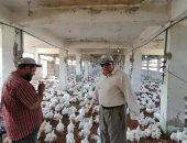 """وكيل """"زراعة دمياط"""" يشرف على إعادة تشغيل مزرعتين للدواجن بعد توقفهما فترة طويلة"""