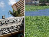 """""""الرى"""" تحذر من زراعة المحاصيل بالجزر النيلية وأراضى طرح النهر.. وتؤكد: المساحات المحيطة بالنيل جزء من قطاعه المائى.. وارتفاع المناسيب قد يؤدى إلى غمر الأراضى وتعريض المواطنين للخطر.. وغرفة عمليات لمتابعة الموقف"""