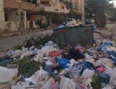 شكوى من انتشار القمامة والحشرات بمنطقة العجمى الاسكندرية