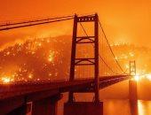 مقتل 9 أشخاص وتفجر ذخائر إثر اندلاع حرائق غابات شرقى أوكرانيا