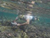 وزيرة البيئة تتخذ الإجراءات القانونية حيال جنوح المركب السياحى بالبحر الأحمر