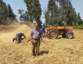 جمع وتدوير 575 ألف طن قش أرز وتنظيم 496 ندوة إرشادية في 6 محافظات