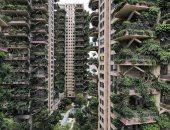 """مجمع سكنى يتحول لمشهد من فيلم عن """"نهاية العالم"""" بسبب الأشجار.. اعرف القصة"""