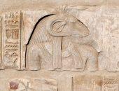 بلاد الذهب ..رحلة إلى درة الحضارة المصرية القديمة.. ألبوم صور