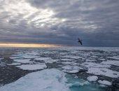 الجليد البحرى يتراجع فى القطب الشمالى إلى ثانى أدنى مستوى