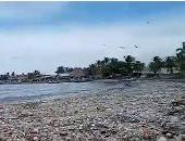 """""""تسونامى"""" من القمامة يجتاح شواطئ هندوراس ومحاولات التنظيف مستمرة"""