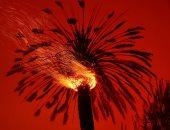 لوحات النار .. جهنم تلتهم غابات كاليفورنيا .. ألبوم صور