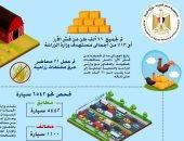 انفوجراف.. وزارة البيئة تعلن جمع 13% من المستهددف بموسم قش الأرز العام الجارى