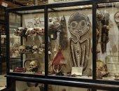متحف أكسفورد ببريطانيا يرفع الجماجم والرؤوس المقطعوة من العرض.. إيه السبب