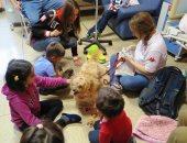 الكلاب تستقبل الطلاب الجدد فى مدارس إيطاليا لتجاوز القلق من كورونا.. صور