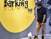 افتتاح أول مقهى لعشاق الكلاب بالسعودية.. صور