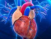 أمراض القلب والأوعية الدموية تتسبب فى وفاة 17.9 مليون شخص بالعالم سنويا