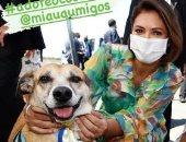 12 دولة تفرض عقوبات بالسجن والغرامة لمن يسئ للحيوانات ..تعرف عليها