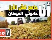 """حكاية السعيد كمال """"أبوقردان"""" الأرض وحانوتي الغيطان بقرى قش الأرز..فيديو"""