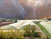 الحرائق تشتعل فى حمص وطرطوس واللاذقية بسوريا .. فيديو
