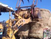 البيئة تحرر 238 محضر حرق مخلفات زراعية.. وتؤكد: اتخاذ الإجراءات القانونية تجاه المخالفين