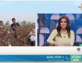 """وزير قطاع الأعمال يكشف لـ""""صباح الخير يا مصر"""" تفاصيل عودة بورصة القطن.. فيديو"""