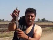 صياد بالغربية يصطاد تمساح صغير ببحر ميت يزيد .. فيديو