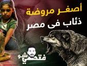 أصغر مروضة ذئاب فى مصر قلب الأسد.. قدرات خارقة