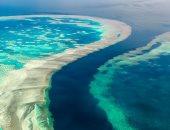الحاجز المرجانى العظيم يخسر أكثر من نصف الشعب خلال 25 عاما