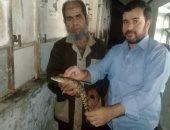 البيئة تتسلم تمساح عثر عليه أحد الصيادين فى ترعة المحلة.. صور