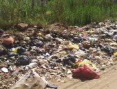 تراكم القمامة فى قرية بنا أبوصير بالغربية.. ورئيس المدينة يتعهد برفعها