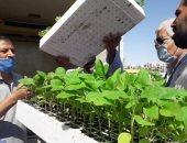 الزراعة تمنح 1000 رخصة لمشاتل الخضر المغطاة وتنظم حملات تتبع للمخالفين