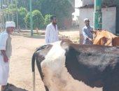 الزراعة تستكمل خطة الترصد النشط لأمراض الماشية بـ5 آلاف قرية..اعرف التفاصيل