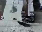 نجاة رجلين بأعجوبة من دب ضخم طاردهما فى شوارع مدينة روسية.. فيديو