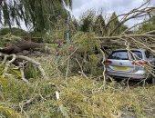 لحظة سقوط شجرة ضخمة على سيارة بسبب الرياح فى بريطانيا.. فيديو