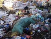 """""""الجيزة"""" تتعهد بحل شكوى من انتشار القمامة أمام مدرسة برقاش الابتدائية"""