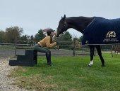 بيلا حديد تكشف عن حصانها المفضل x  صورتين